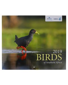 2019 BIRDS OF SOUTHERN AFRICA